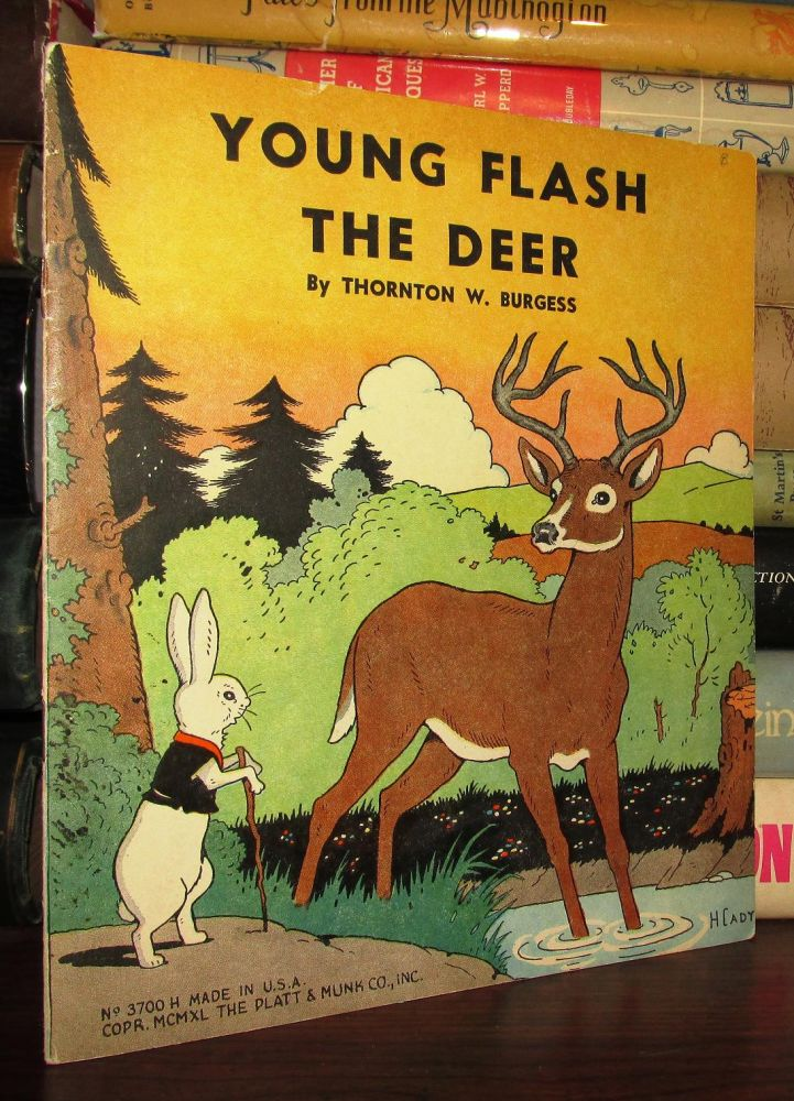 YOUNG FLASH THE DEER. Thornton W. Burgess.